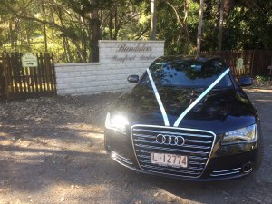 Bundaleer Rainforest Gardens milimo Brisbane limo Car Hire Transfers